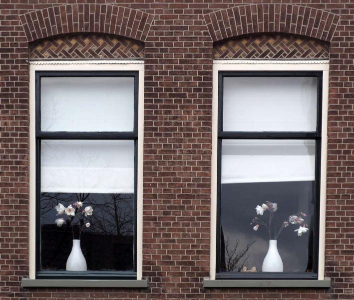 © Timco van Brummelen