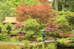 ©John Stratton Japanse Tuin