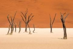 ©Lex Scheers - Sossusvlei, Namibia