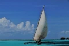 ©Roberto Francini_sail & wind