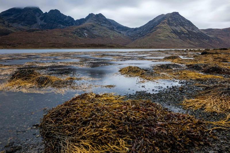 ©Theo Mahieu_Scotland3