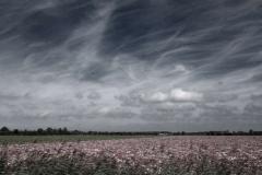 ©Timco van Brummelen - On the road 09