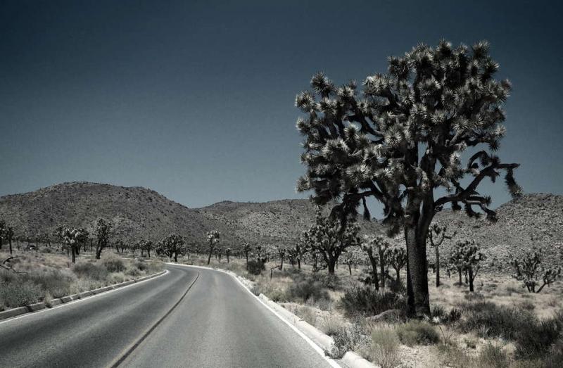 ©Timco van Brummelen - Roadtrip USA 26
