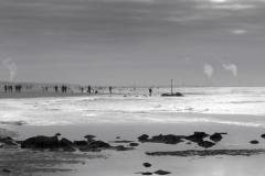 ©Timco van Brummelen  - Zandmotor 03